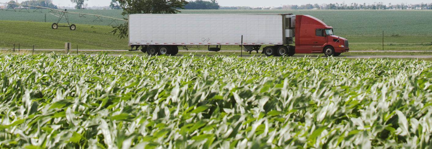 truck-in-a-field